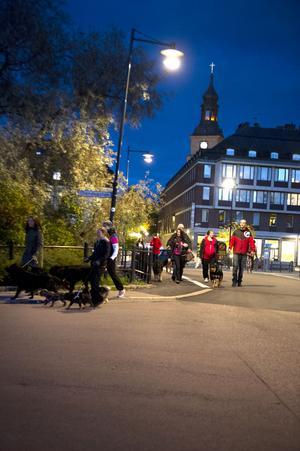 Från rastgården genom staden tågade hundägarna mot polishuset och den riksomfattande ljuständningen framför många av landets polisstationer.