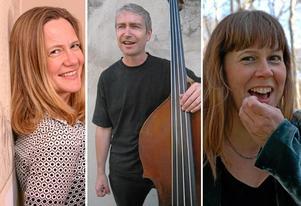 Helena Ek, Peter Janson och Anna Svens-dotter. Trions musik färgas av deras olika bakgrunder i folkmusik, nutida konstmusik, jazz och tidig musik.