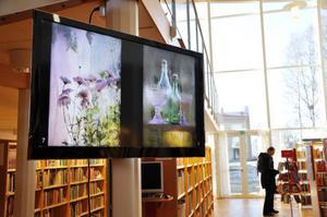 Bräcke kommun har investerat i digitala skärmar till biblioteken i Bräcke, Gällö och Kälarne som bland annat kan visa fotokonst. Just nu finns en utställning med bilder av Wictoria Boije.