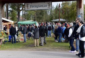 Om bondemarknaden fortsätter at växa så räcker inte vackra Forsgläntan till längre, så många besökare kom det till årets marknad.