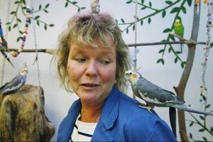 Lisa Nilsson är en av sex som jobbar med djuren. De andra fem jobbar också som lärare på skolan. Här har djurhusets nymfparakit landat på hennes axel.