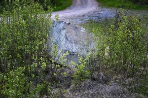 Här tog det stopp för 19-åringen. Kraschen mot stenen efter länsväg 323 vid Singsån, strax söder om Ragunda by, blev våldsam och 19-åringen avled på platsen. Foto: Ingvar Ericsson