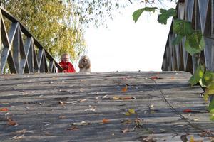 Två huvuden som är på bron.