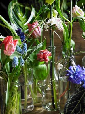 Man tager vad man haver. Diskade flaskor och syltburkar passar utmärkt för blommorna.
