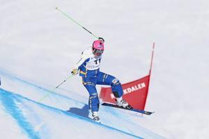 Viktor Öhling-Norberg