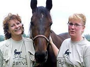 Foto: ANDREAS BARDELL Hästivalgeneraler. Annelie Larsson och Jessica Wennerström, här med travstoet Galantina, väntar sig mellan 600 och 700 gästande hästar under de tio dagarna.
