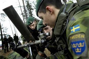 Sveriges och Europas säkerhet byggs genom samarbete.