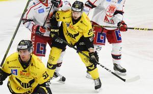 Marcus Bergman, kan räkna med ett kontraktsförslag från Gulsvart.