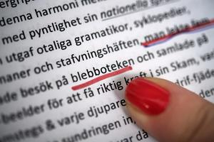 Nils Håkansons nya roman