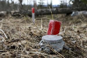 Borrhål från uranprospektering. Foto: Marcus Berglund.