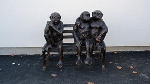 Statyn med tre apor möter  besökare  vid husets entré.  Den är importerad från Florida.