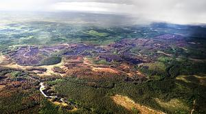 Det är ett mycket stort område som omfattas av skogsbranden i Vännebo och Norhyttan. Det handlar om ett två kilometer brett område som sträcker sig från Vännebo by nästan ner till Norhyttan. Det som är svart och brunt på bilden är skog som har brunnit. Det handlar om skador för många miljoner kronor. Foto:Karin Rickardsson