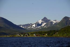 Slående. När naturen själv får välja! Foto:KjellHansson/Talu