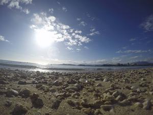 Uppspolade koraller på stranden på Ile aux Canards vittnar om fantastisk snorkling bara några meter ut i vattnet.