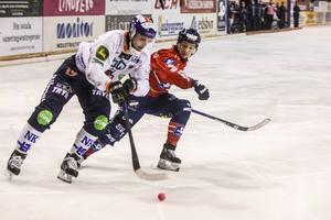 Patrik Nilsson har svarat för 25 mål på 12 matcher för Bollnäs och ser ut att bli den målskytt som Bollnäs supportrar längtat efter i så många år.