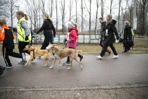 Omtankeloppet arrangerades på Sportfältet i Borlänge första gången 2016. Deltagarna kan både springa eller promenera och får gärna ha med sig barnvagnar och hundar.