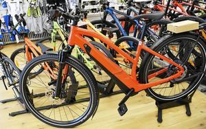 Redan i dag lånar Borlänge kommun ut elcyklar till allmänheten. Under senhösten räknar kommunen med att kunna utsöka utbudet med två ellastcyklar och en elcykel med cykelvagn.