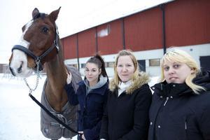 Från vänster: Hästen Eskil, Samantha Sandy, Susanne Steen (mamma till Samantha) och Johanna Otterberg.