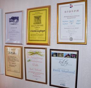 Gott om diplom och utmärkelser har Bertil Westlund dragit på sig under åren. Nere till höger det senaste. Ragunda kommuns kulturstipendium.