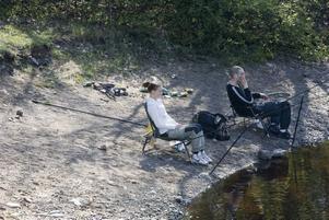 GÄVLEPREMIÄR. Testeboån är något av ett eldorado för sportfiskare under valborgshelgen. Här leker de största vimmorna i landet. Elin Edvinsson från Umeå är en av få tjejer som kommit för att fiska.