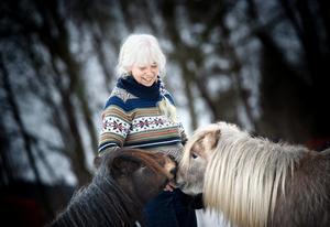 Irene Lado i Örebro har tre minishetlandsponnies som husdjur.