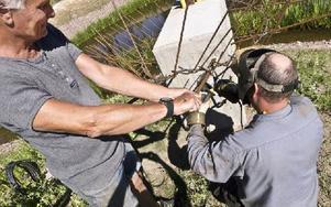 Bernd Janusch får hjälp med de hårda stålrören, så att de bildar en öppning som klotet ska födas ur. Foto: Pelle Engman/DT