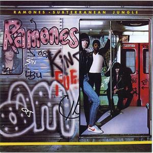 Det är inte varje dag som Ramones album Subterranean Jungle refereras till i fullmäktige. Men ibland händer det.