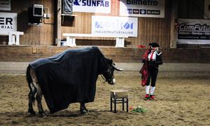 Ridlärarna bjöd på ett uppskattat shownummer på temat tjuren Ferdinand.