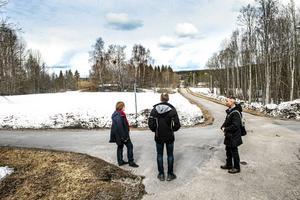 Skogen här i Granloholm har delats upp i schackrutor för att få en bioligisk mångfald.