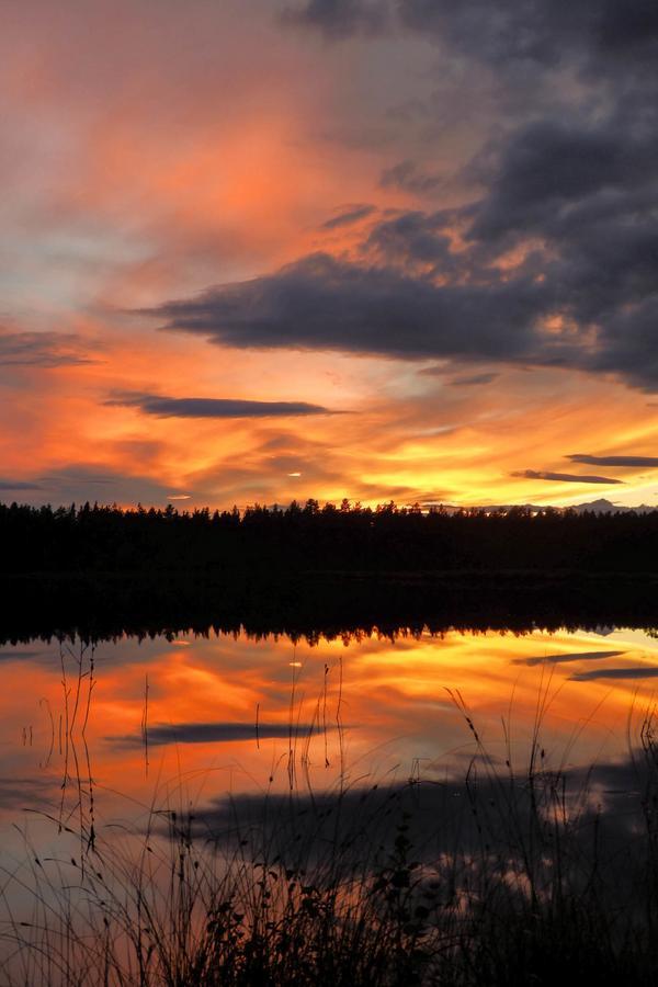 En av många solnedgångar. Det är detaljerna som gör skillnaden.