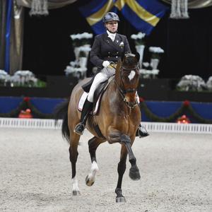 Landslagryttaren Charlotte Haid Bondergaard, här på sin häst Triviant, har köpt in sig i Bergåkras Amaranth, och hon är helt lyriskt över hingstens ridbarhet.