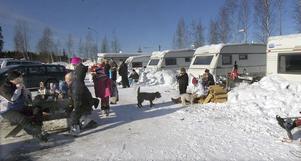 Det är liv och rörelse vid husvagnscampingen vid när sportlovsfirande Gävlebor anländer till Edsbyn.