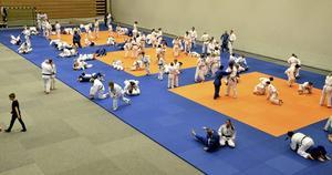 Fullt hus. Årets tredagars judofestival i Lindebergs arena lockade 350 utövare plus anhöriga, instruktörer och tränare. Foto: Michael Landberg