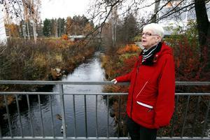 Anita Runvald visar den igenvuxna Tickselbäcken.