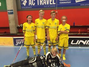 Alexander Jonsson, Marcus Carlson, Viktor Hammarstedt, Noel Gradin och målvakten Johannes Pettersson från Ankarsvik BK P02 var alla uttagna till Selected Player International Cup i Helsingfors där det blev guld för Sverige.