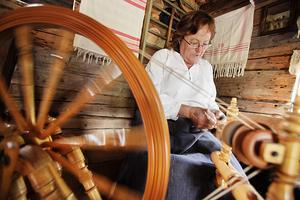 Ann-Lisa Persson från Tjärna spinner garn från håret av en lapphund.