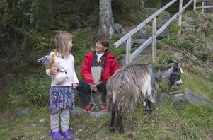 Emilia Myrtennäs och Eva Lidberg diskuterar geten Gríma i Fornminnesparken i Funäsdalen.