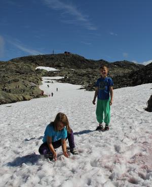 När det finns snö i mitten av juli måste man bara stanna upp och leka när man ska upp på Åreskutans topp.