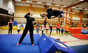 Det fanns en hel del våghalsar på plats när Norrtälje Gymnastikförening ordnade ett miniläger i Roslagsskolans idrottshall på sportlovet.