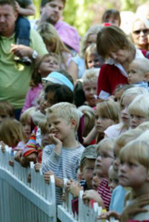 Pippis musikal innehöll mycket roligt men även en del spänning och allvar.