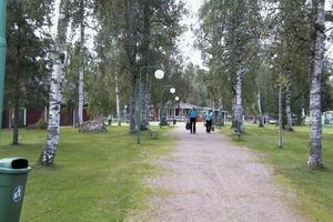 Vackra Forsparken i Alfta är platsen för Stormässan. Under lördag och söndag arrangeras årets Stormässa. I fjol hade man 1 300 besökare på lördagen.