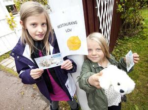 Alva Qvist och Allis Bülow från Skräddarbacken är isbjörnarnas bästa vänner. Förra helgen öppnade de restaurang och sålde för nästan 1000 kronor som de nu investerar i att bli isbjörnsfaddrar åt Världsnaturfonden.