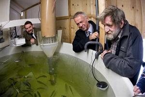 Axel Wenblad, generaldirektör, Fiskeriverket och landshövdingGerhard Larsson, besökte Per-Erik Nygård och Kattastrandsprojektet