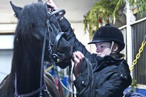 Julia Schneider älskar sina hästar. Tre timmar varje dag tillbringar hon i stallet.