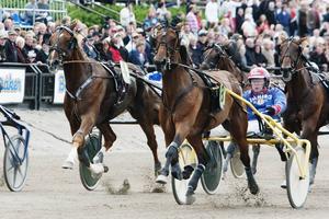 Arkivbild från Sundsvall Open Trot år 2010.