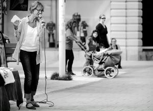Gudrun Schymans parti, Feministiskt initiativ, är ett av flera nya partier som knackar på riksdagens port.
