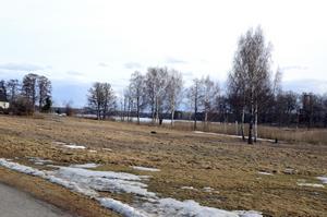 Sjöutsikt. Parken med utsikt över Väringen kan bli nästa bostadsomtråde i Frövi. Libo och BMB ska ta fram beslutsunderlag till politikerna.BILD: INGVAR SVENSSON