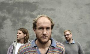 Klas Isaksson, Åke Olofsson och Dan Brännvall är tre av medlemmarna i sjumannakollektivet Den Svenska Björnstammen, som lever och skapar pop och konst på en gård utan Norrköping.
