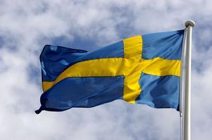 Svenska flaggan. Fanan är avsedd att bäras och består därför av en flaggduk fäst vid en stång. Till skillnad från flaggan har fanan fastställda mått.