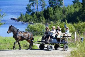 23-årige Pilbest drog vagnen när det var dags för premiärtur av den musikaliska pilgrimsturen längs S:t Olavsleden i Nedansjö. För musiken stod Sofia Sahlin och Anna-Karin Bouvin höll i tömmarna. De fick idén tidigare i sommar och